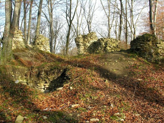 A Vértes középkori erődített vadászlaka