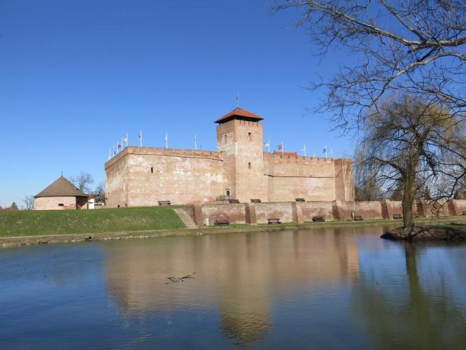Gyula várának története a XVI. század közepéig ( I. rész )