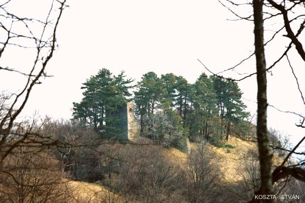 Höltövény vára, Hălchiu, Heldenburg