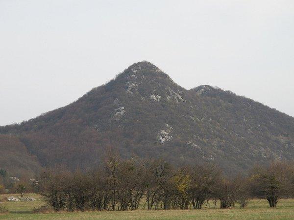 Osztrovica
