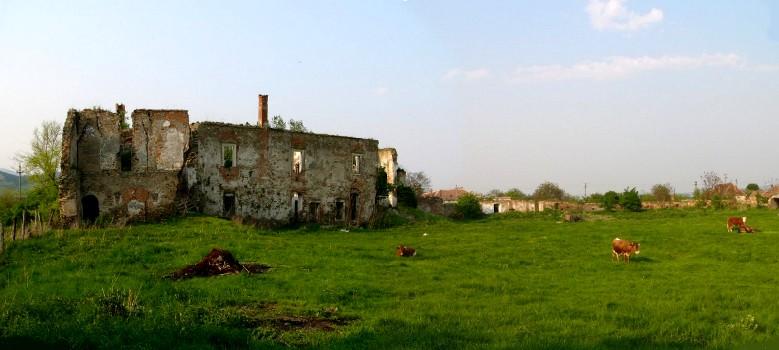 Martinuzzi várkastély